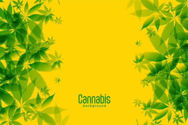 노란색 배경에 녹색 마리화나 잎