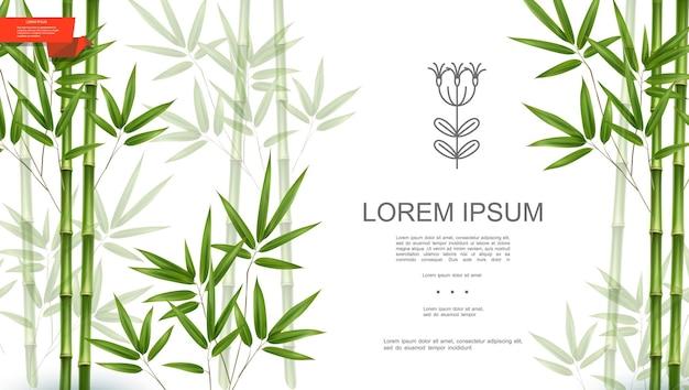 대나무 줄기와 잎 현실적인 스타일 일러스트와 함께 녹색 자연 열대 식물 배경