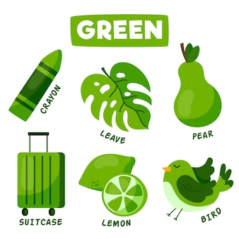 Green objects and vocabulary set in english