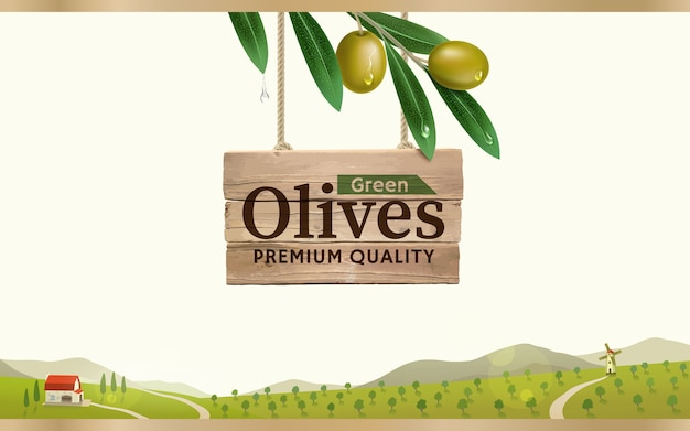 Green olive label with realistic olive branch on green olive farm background, design for canned olives packaging and olive oil.