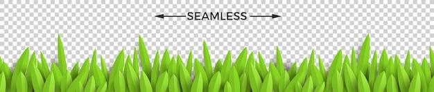緑の紙草。水平方向のシームレスなデザイン。
