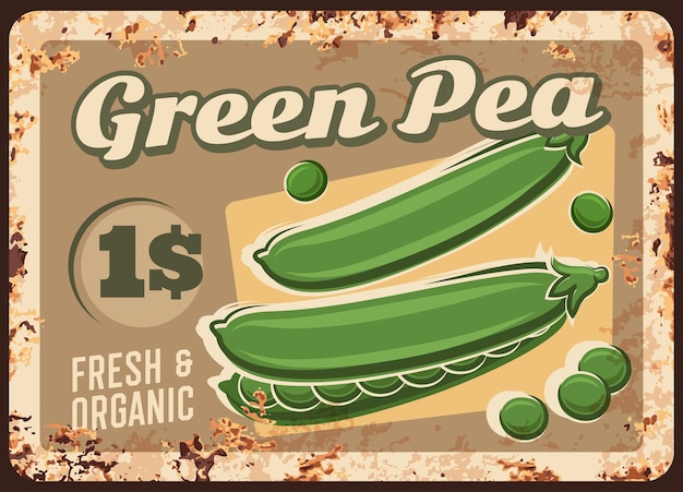 Green peas rusty metal plate, price tag for farm market, vintage rust tin sign.