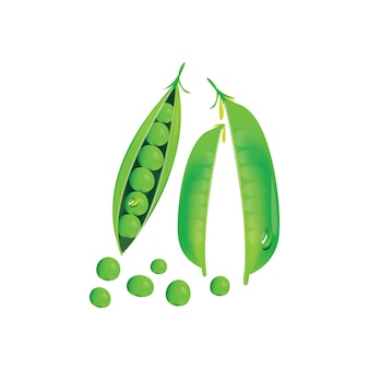 Green peas on white background.