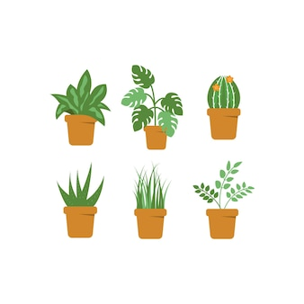 Green plant pot vector isolated illustration