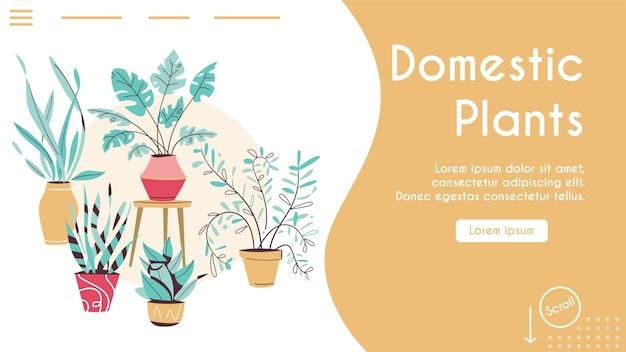 Зеленые растения в горшках набор изолированных объектов. горшки для деревьев, подвесные вазоны для укладки комнатных. домашний сад, посадка цветов, комнатное растение в интерьере, зелень в офисе