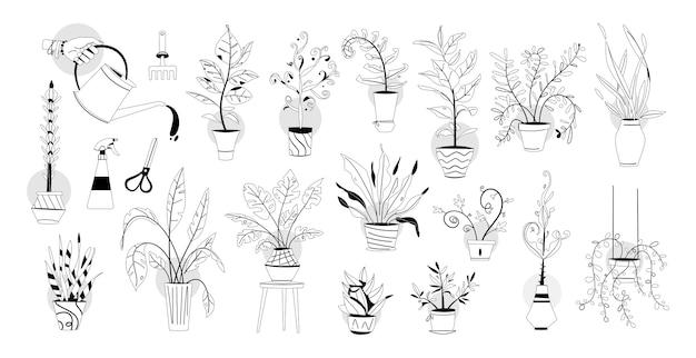 Зеленые растения в горшках с большим набором садовых инструментов. горшки для деревьев, подвесные вазоны для укладки комнатных. лейка, машинка для стрижки, грабли, пульверизатор. домашний сад, посадка цветов
