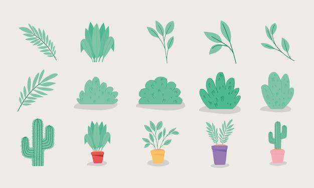 緑の植物アイテム