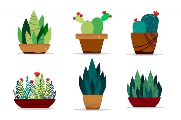 緑の植物が白い背景で隔離の鍋に設定