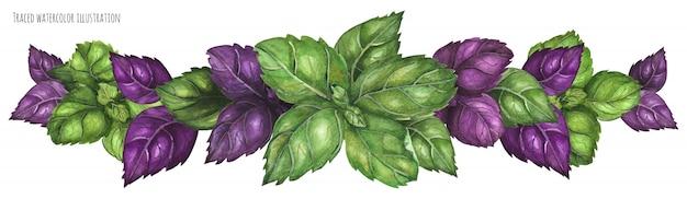 Green and purple basil garland