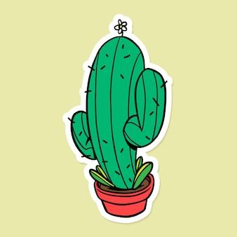 Зеленый кактус сагуаро с белой каймой