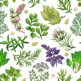 Green seamless pattern with herbs on white