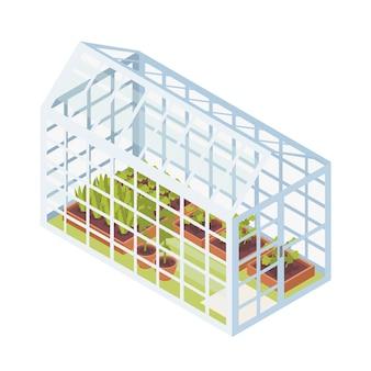 유리 온실 내부의 토양이있는 상자에서 자라는 녹색 묘목