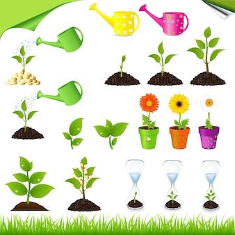 Зеленый набор