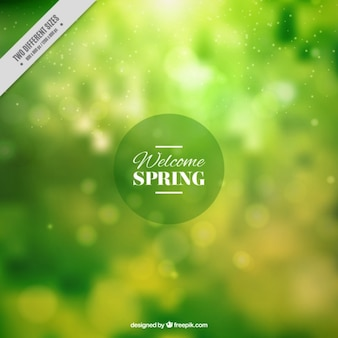Green spring blurred background