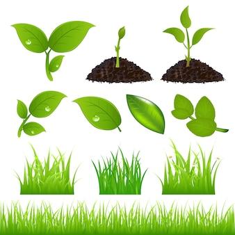 Набор элементов зеленой весны