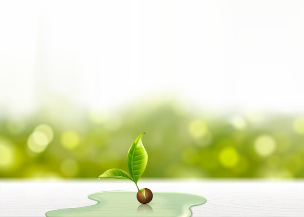 Green sprout with waters on white wooden table, glitter bokeh background