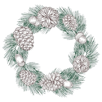 Green spruce branches wreath with cones
