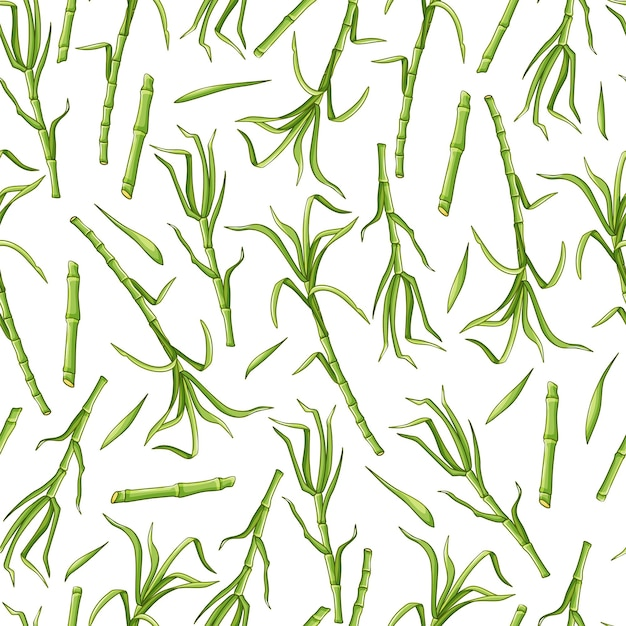 흰색 배경 완벽 한 패턴에 녹색 사탕 수수. 벡터 배경입니다.
