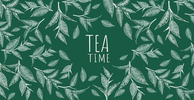 Green tea background hand drawn illu