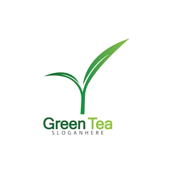 녹차 잎 로고 벡터 아이콘 일러스트 디자인 흰색 배경-벡터 이미지에 고립