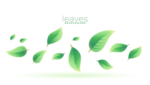 Green tea leaves falling background design