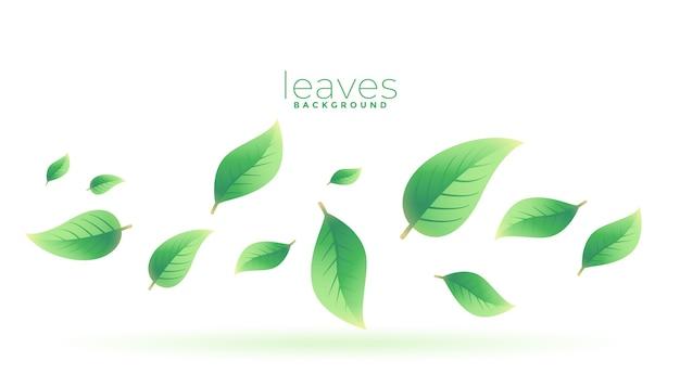 緑茶葉落ちる背景デザイン