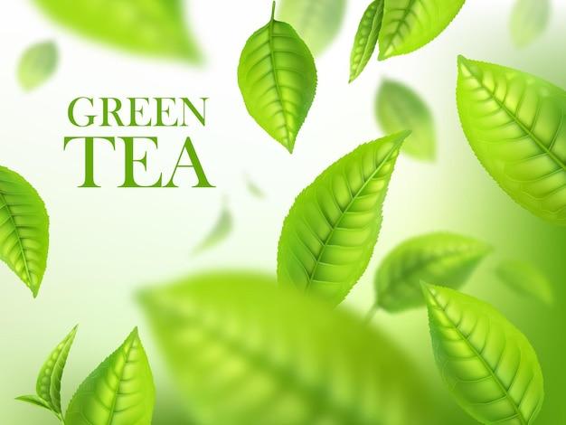 緑茶の葉、有機ハーブの背景、飲料広告のベクトルテンプレート。ぼけぼけ効果のある落ちてくる3d緑の葉。マクロ植物の葉が動いているリアルなポスターデザイン