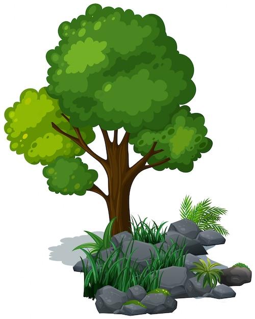 tree vectors photos and psd files free download rh freepik com tree vector silhouette trees victoria bc