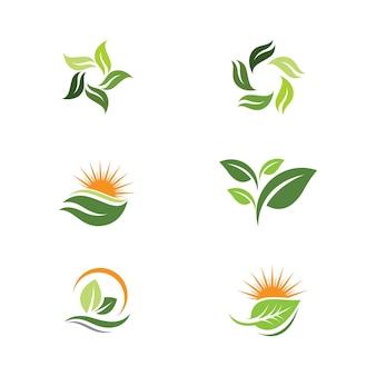 Зеленый лист дерева экология природа элемент векторный дизайн