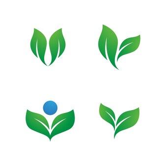 녹색 나무 잎 생태 자연 요소 벡터 디자인
