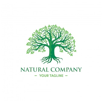 Green tree logo design natural herbal premium vector