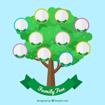 Зеленое дерево с кругами для членов семьи