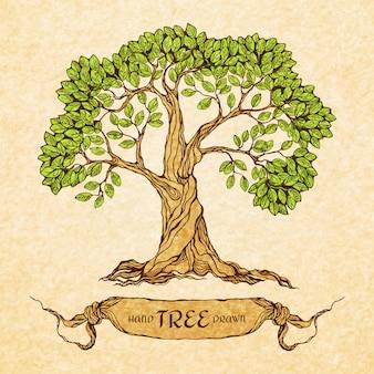 텍스트에 대 한 장소를 가진 녹색 나무