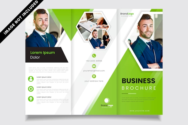 Green tri-fold business brochure