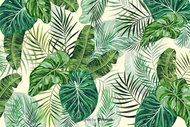 Green tropical leaves decorative background