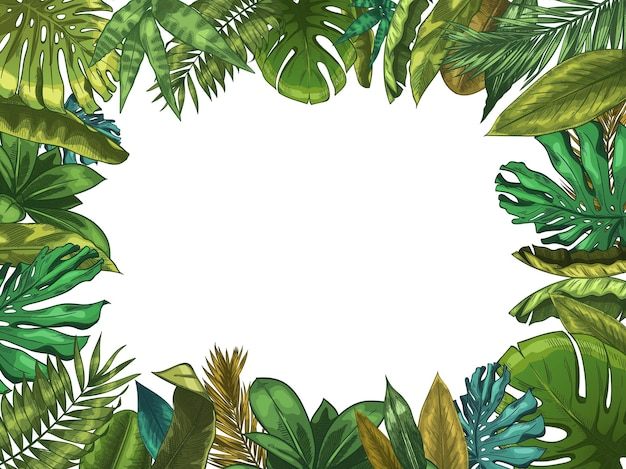 Green tropical leaves frame. nature leaf border, summer vacation and jungle plants. monstera and exotic palm tree leafs illustration.