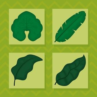 Набор иконок зеленые тропические листья