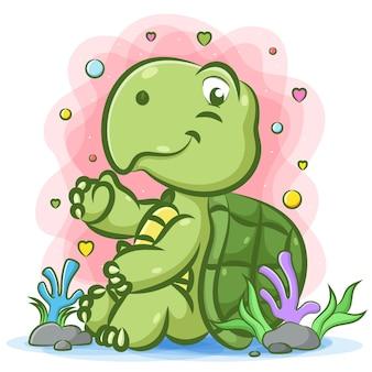 Зеленая черепаха сидит у камня под водой со счастливым лицом