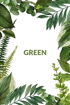 Greenery and ferns frame, hand drawn vector