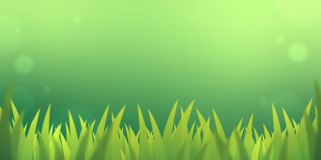 緑の自然の背景のコピースペースに緑の草