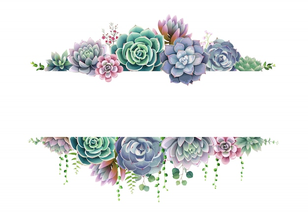 Greenery, succulent and branches frame border