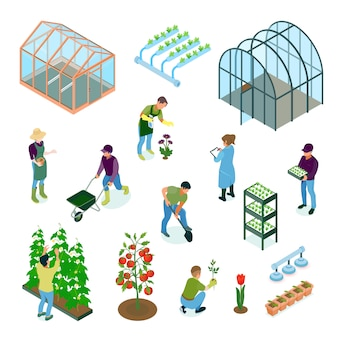 Greenhouse glasshouse hydroponic system vegetables flowers cultivation irrigation facilities isometric elements set