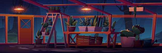 Greenhouse interior at night with potted plants