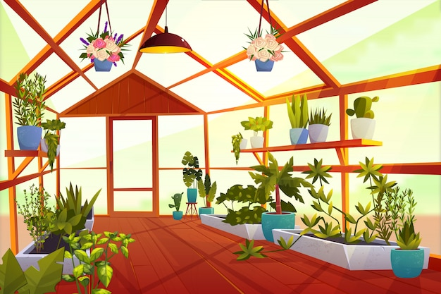 Greenhouse interior with garden inside. large bright empty orangery with glass walls