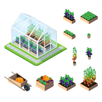 Greenhouse isometric set