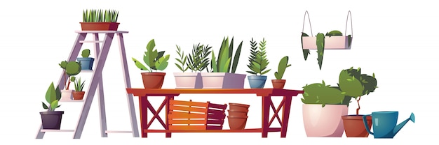 Greenhouse plants, orangery or floristic store interior stuff, garden rack with potted flowers,