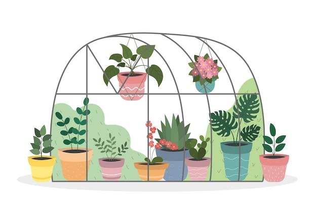 カラフルな鉢に屋内の花が咲く温室