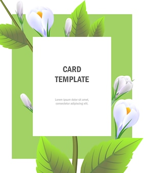 Greeting card template with white crocuses on green frame. Party, event, celebration.