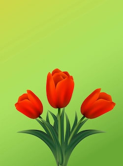 Greeting card with tulips flowers on green background