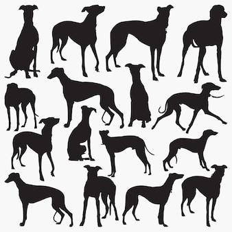 Grey hound silhouettes